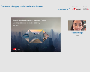 Webinar-the-Future-of-Supply-Chains-23072020